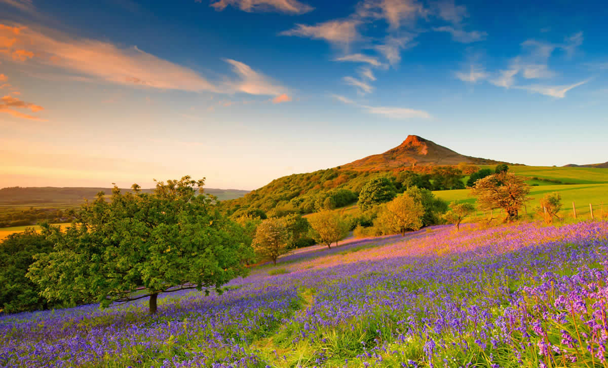 North Yorkshire: a guide to autumn weekend breaks - Telegraph