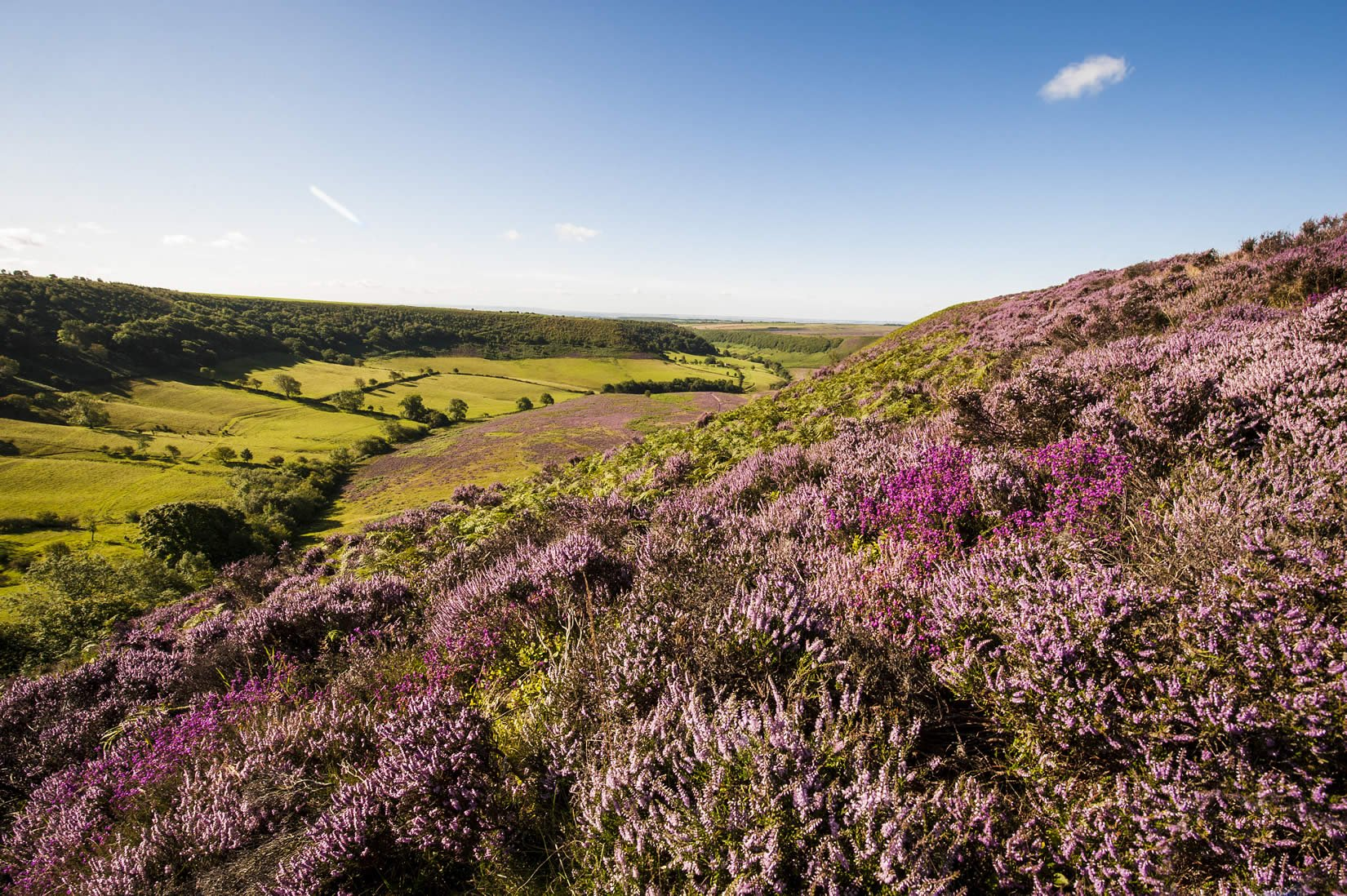 how to get to north york moors from york