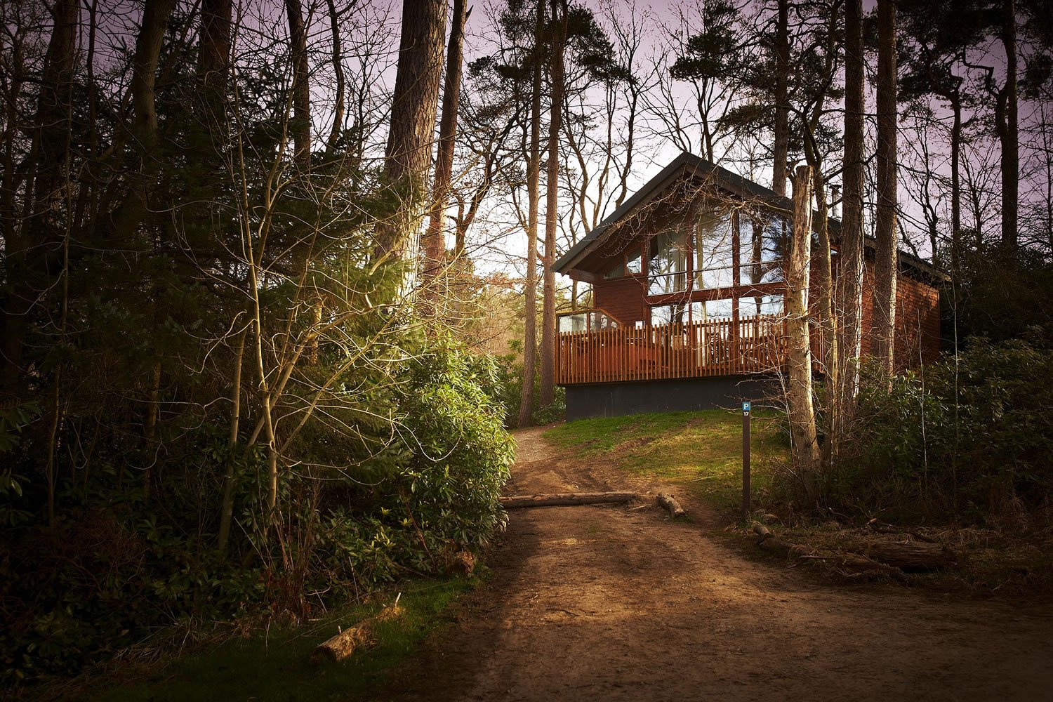 New Forest Cabins Dog Friendly