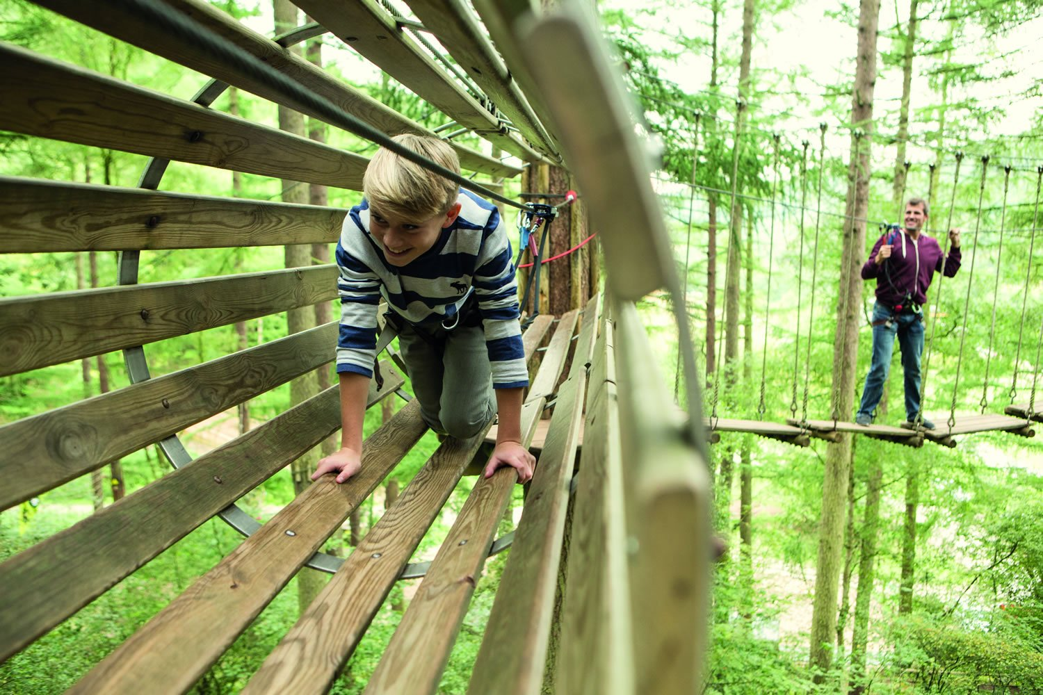 Go Bananas At Go Ape Dalby Forest Features Welcome To