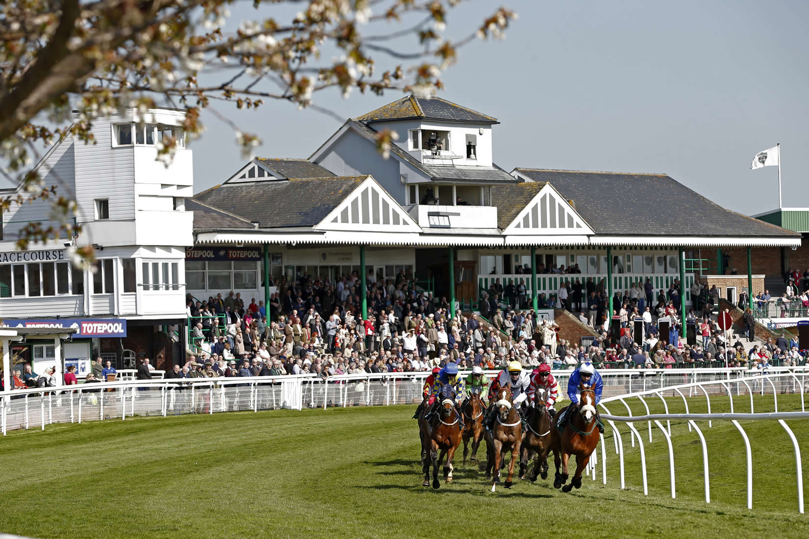 Catterick racecourse sports activity richmond for Dining near at t park