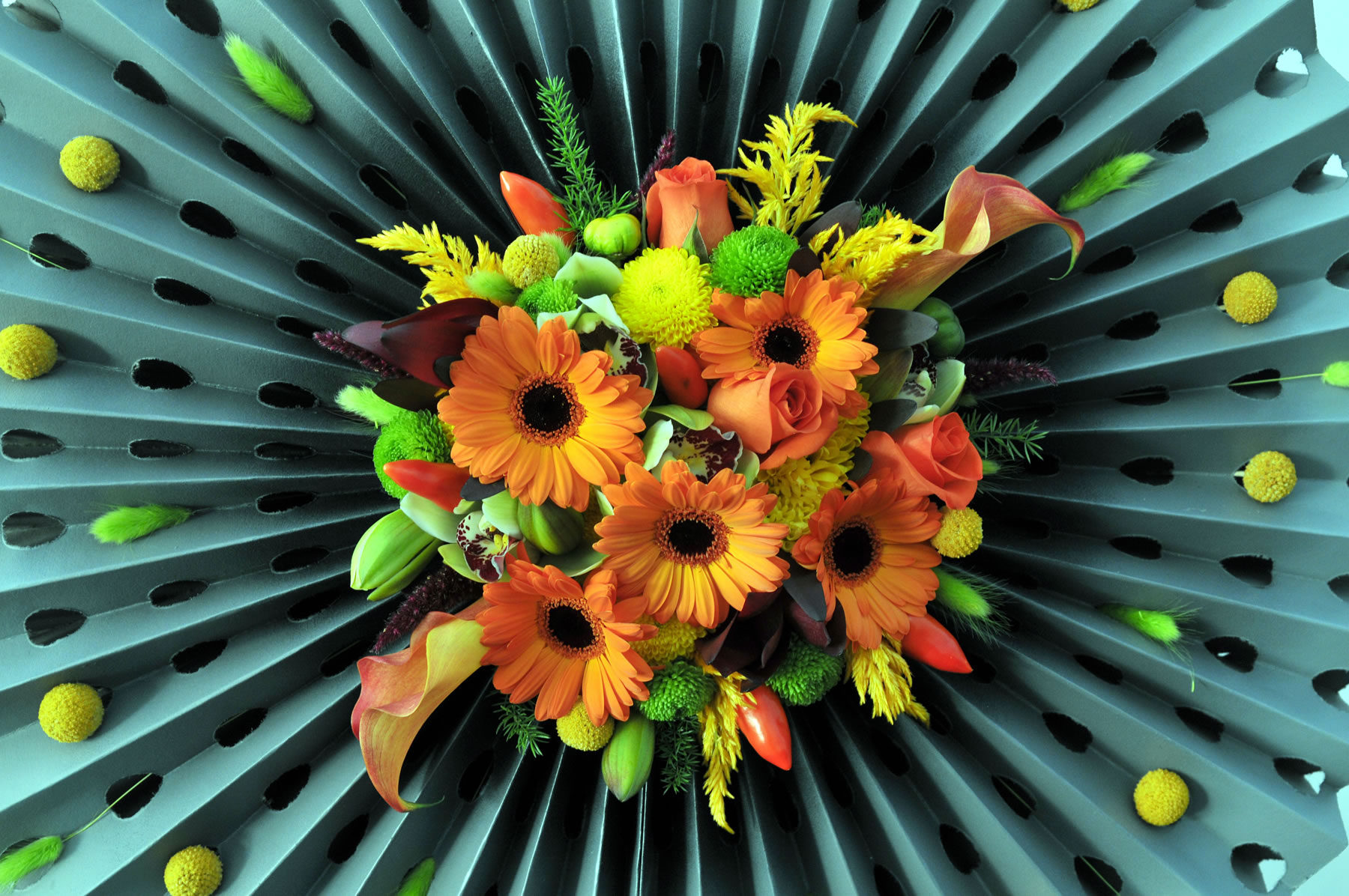 Harrogate Autumn Flower Show Event Harrogate North Yorkshire Welcome To Yorkshire